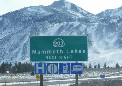 Mammoth Sign Big