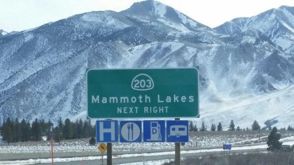 Mammoth Sign Big