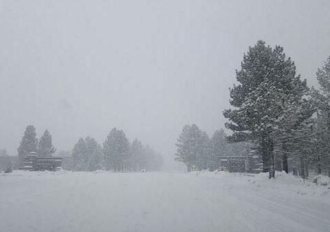 Snow at sign
