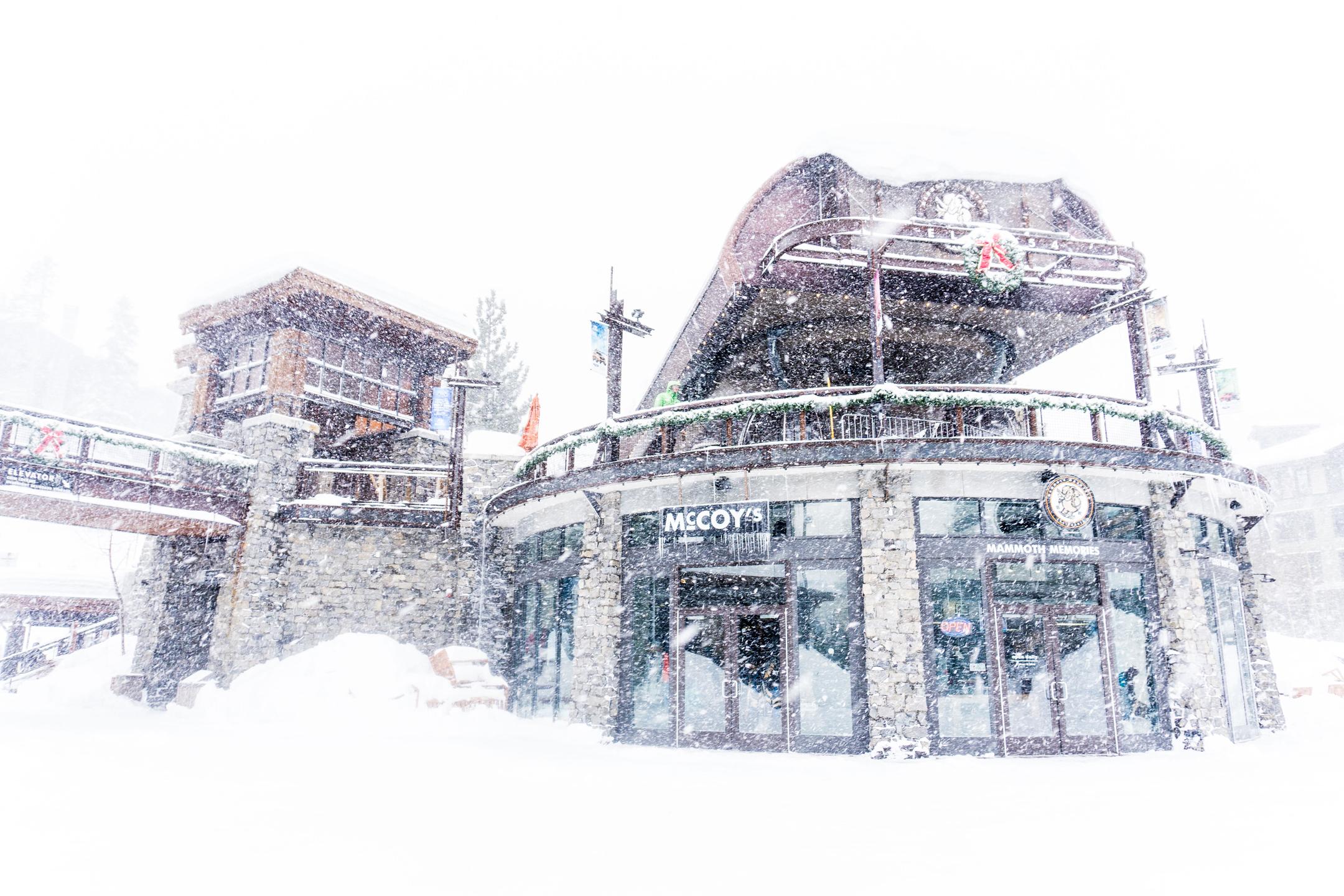 Snow Snow & More Snow!