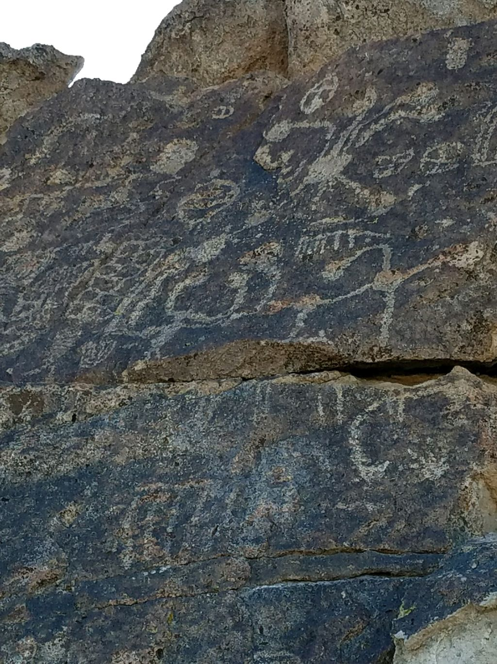 Mammoth's Hidden Petroglyphs