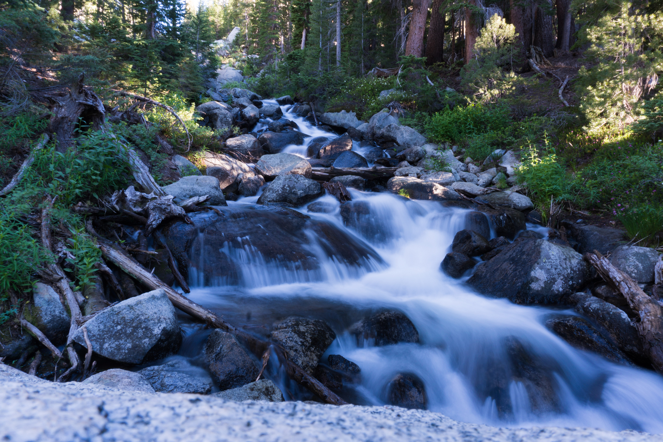 2016-07-09-Summer-Hike-to-Valentine-Lake-WRAY-30.jpg